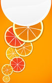 Citrus background. Ready for a text — Stock Vector