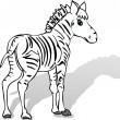 Zebra cartoon - Stock Vector