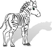 Zebra cartoon — Vector de stock