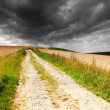Country road  and dark clouds — Stock Photo