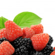 Ripe  blackberry and raspberry - Stock Photo