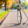 Bicycle — Stock Photo #8026884