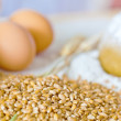 Grain yolk — Stock Photo
