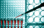 Microtubes and micropipet lab test — Stock Photo