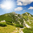 JuliAlps - Slovenia, Europe — Stock Photo #10104463