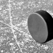 Hockey puck — Stock Photo #10104529