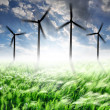 Wheat fields with wind turbines — Stock Photo #10104540