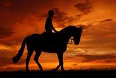 在一匹马上的骑手 — 图库照片