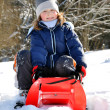 Girl on a sleigh — Stock Photo #7974030