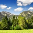 JuliAlps, Slovenia — Stock Photo #7974477