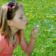 Girl with a bubble blower - Stock Photo