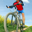 Mountain biker — Stock Photo #7974758