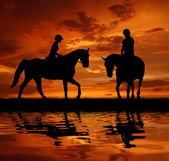Ryttare på en häst — Stockfoto