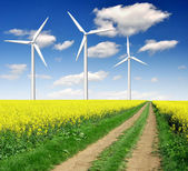 Rapeseed field with wind turbine — Stock Photo
