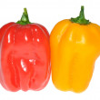 Habanero chilli — Stock Photo
