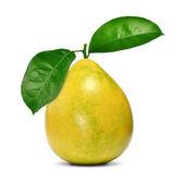 Frutto di pomelo — Foto Stock