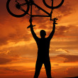 Mountain biker - Foto de Stock