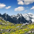 Stock Photo: Mont Blanc-France