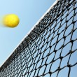 Tennis game - 