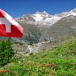 Mountain Ober Gabelhorn with Swiss flag — Stock Photo #8058960