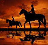 Cavaleiros em um cavalo — Foto Stock