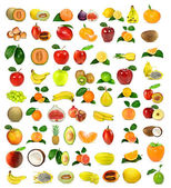 Large collection of fruit — Stock Photo