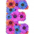 Alphabet of colorful dewy flowers - Stock Photo