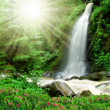 Beautiful waterfall - Czech Republic — Stock Photo #8098933