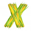 Alphabet of corn — Stock Photo