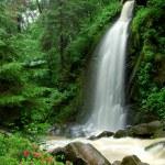 Beautiful waterfall — Stock Photo #8099336