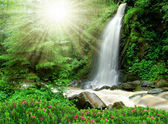 Beautiful waterfall - Czech Republic — Stock Photo