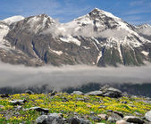 National Park Hohe Tauern, Austria — Stock Photo