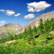 Valley Saastal in Swiss Alps - Stock Photo