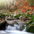 Autumn creek - Stockfoto