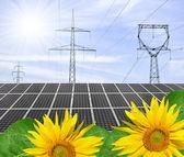 Pannelli energia solare — Foto Stock