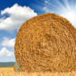 Royalty-Free Stock Photo: Big round bales of straw
