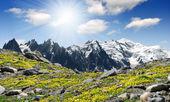 Savoyer alpen-europa — Stockfoto