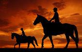 Jeźdźca na koniu — Zdjęcie stockowe