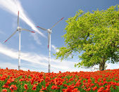 Wind turbine and red poppy — Stock Photo