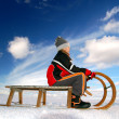 Girl on a sledge — Stock Photo #8222189