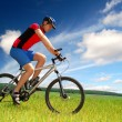 Mountain biker — Stock Photo #8222196