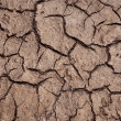 Cracked soil - Stock Photo
