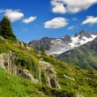Savoy Alps-Europe — Stock Photo #8238284