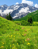 Mountains of Passo Tonale-Italy — Stock Photo