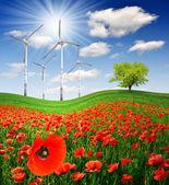 Spring landscape with wind turbines — Stok fotoğraf