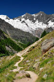 Swiss alps — 图库照片