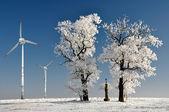 Winter tree with wind turbine — Stock Photo