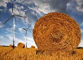 Straw bales on farmland — Stockfoto