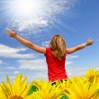 The girl in a sunflower field - Stock Photo