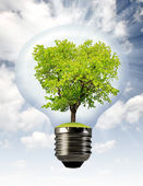 Green tree growing in a bulb — Stock Photo